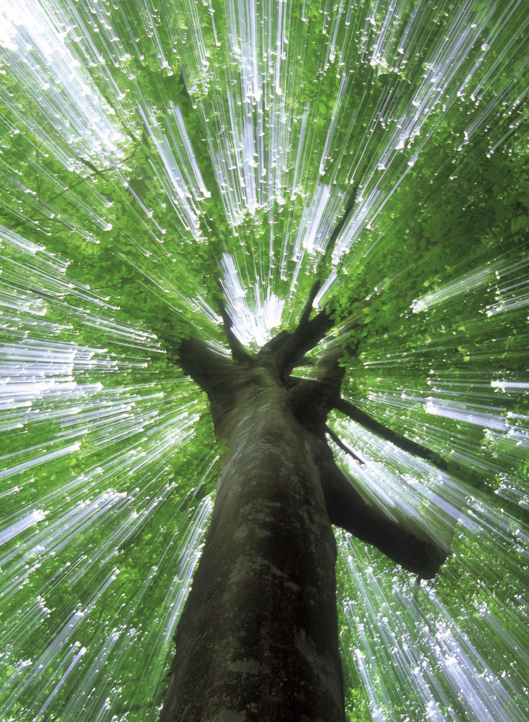 Why does a psychotherapeutic practice have energetic healing?