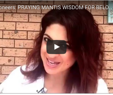 PRAYING MANTIS WISDOM FOR BELOVED UNION PREPARATION